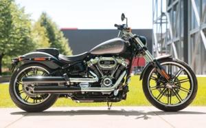 Fat Bob 114 - Harley Davidson